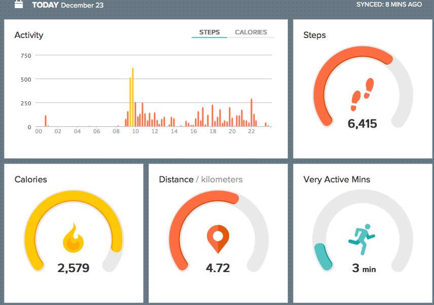 Fitbit dashboard beta